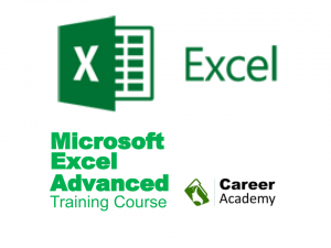 Workface the Career Academy Microsoft Excel Advanced Certificate Short Course Training - logo